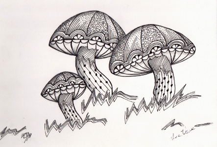 Mushrooms Zen 300